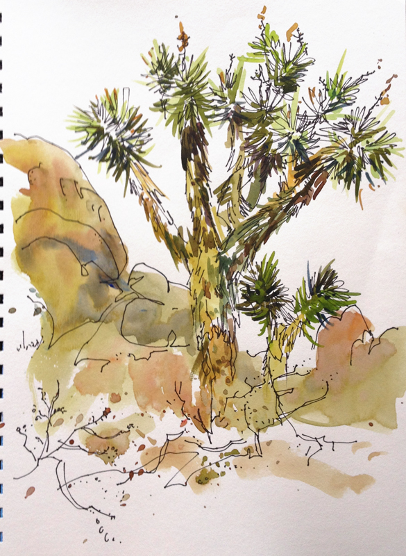 josua_tree