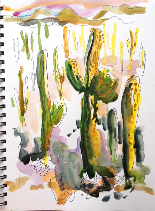 tuscon-saguaro_sunset