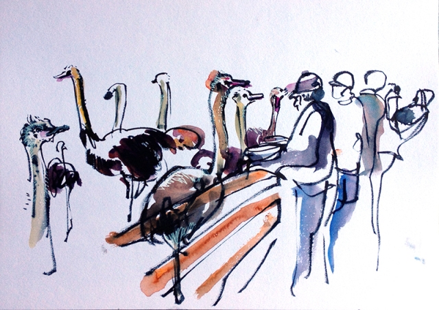 road_trp_us3_solvang2-ostrich
