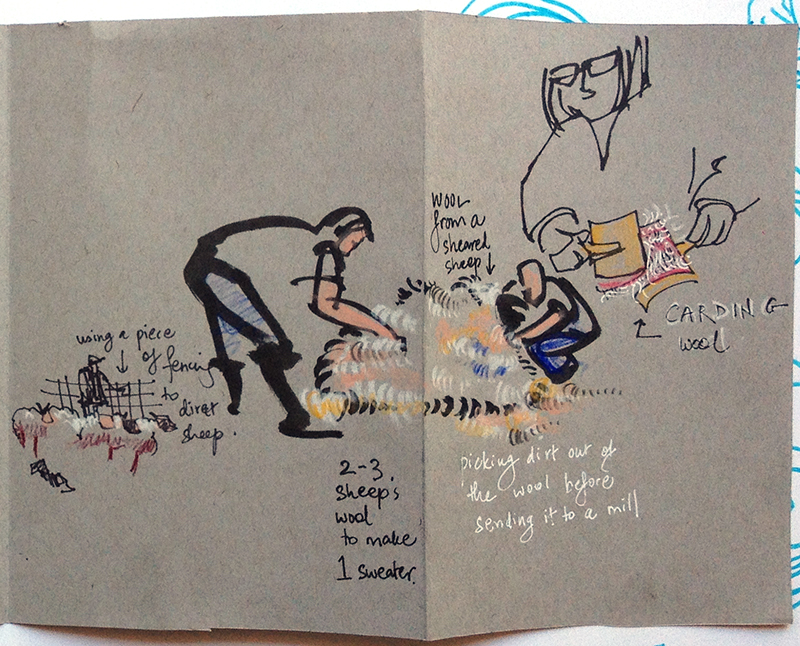 sheep_shearing_long_2of2