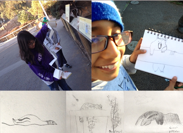 zoo_kids_draw
