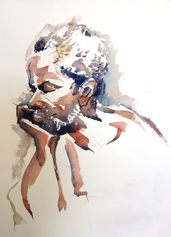 Figure_crowe_watercolors