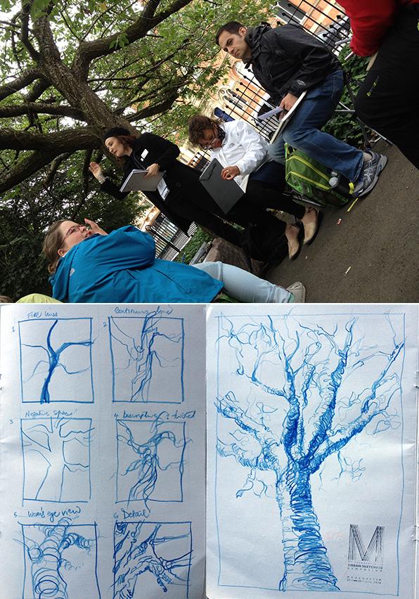 day4_trees.jpg