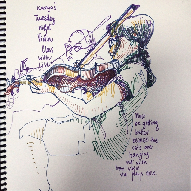 violincolor