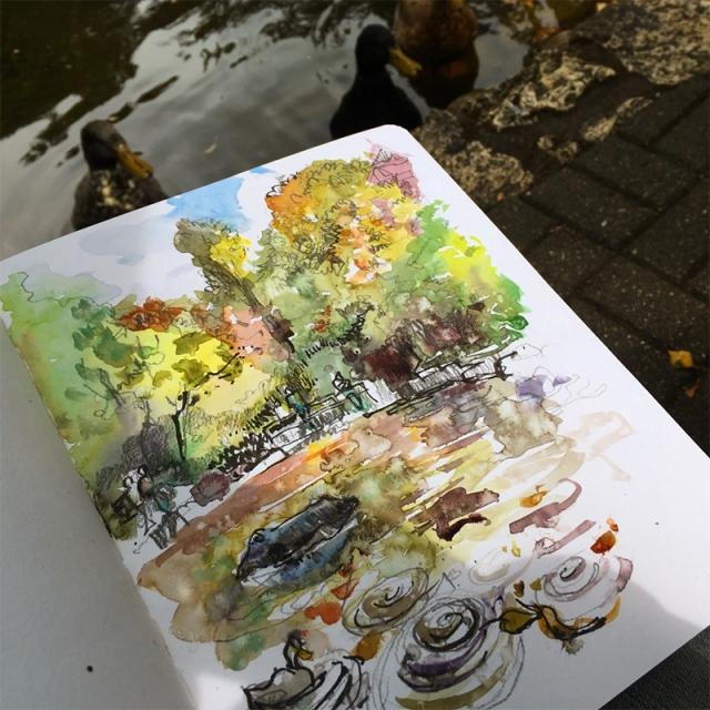 oregon_duckpond_rain2