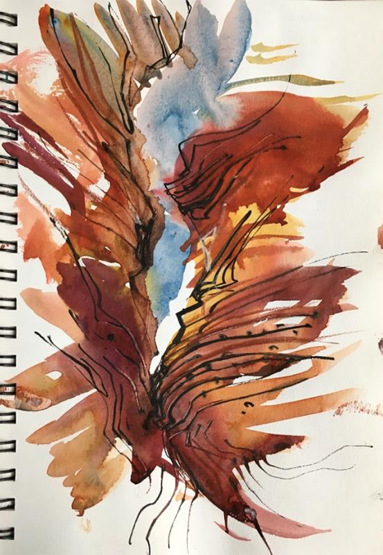 antelope6