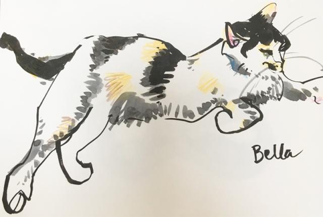 dancing_cat4