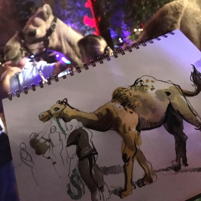 hhpz_camel