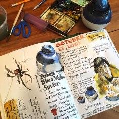 journal_blackwidow