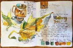 sketchjournal4