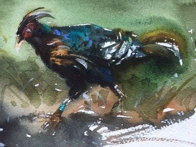 1_30x30_pheasant