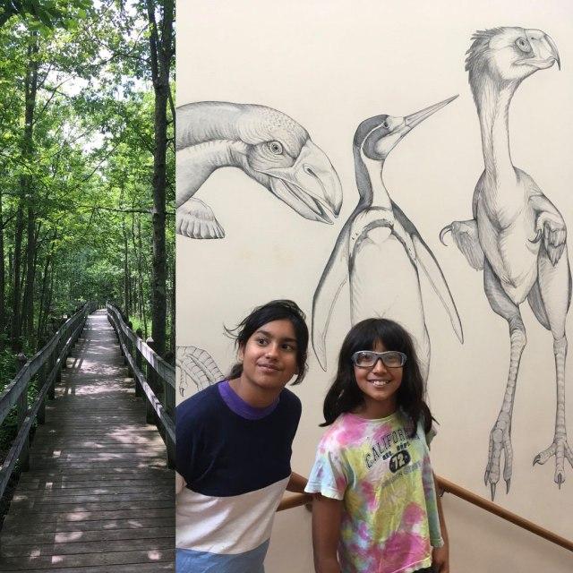 ithaca_bird_museum