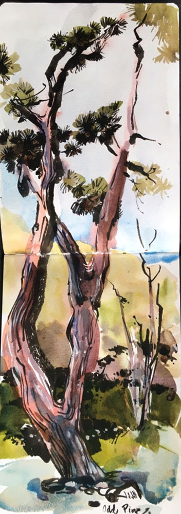 Page27_tree