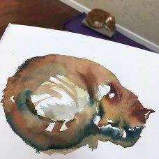 nolinecat2